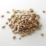 Potravinové alergeny