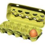 Jsou vajíčka součástí zdravé výživy?