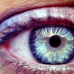 Mýty o zraku a o očích: Škodí očím počítač a pomáhá mrkev?