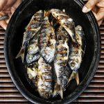 Kalorie v rybách – kolik kalorií má ta která ryba?
