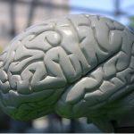 Vaskulární demence – léčba, příznaky a prognóza