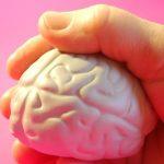 Co škodí vašemu mozku? Tyto věci mozek nemá rád…