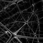 Prevence stařecké demence – jak na ni?