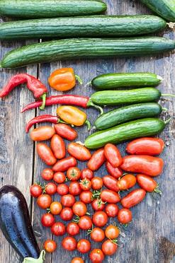Zelenina obsahuje mnoho antioxidantů..