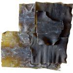 Mořské řasy Kombu – zbavují tělo těžkých kovů