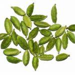 Kardamom (nebo nesprávně kardamon) a zdraví – skvěle podporuje trávení
