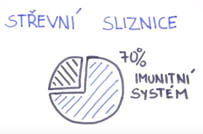 Vliv střevních mikroorganismů na lidské zdraví
