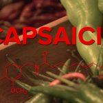 Kapsaicin (Capsaicin) a zdraví – kdy nám může pomoci?