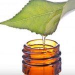 Čajovníkový olej na pleť – na co je dobrý?