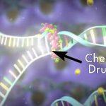 Chemoterapie – jak ji co nejlépe zvládnout? Zajímavé informace…