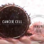 Imunoterapie a rakovina – jak se imunoterapie uplatňuje v onkologii?