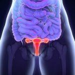 Lunární cyklus ženy – využijte proměny během menstruačního cyklu ve svůj prospěch