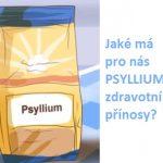 Psyllium a jeho účinky na zdraví – zajistí dostatečný přísun vlákniny