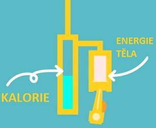 Kalorie jsou způsob, jak sledovat jakýsi energetický rozpočet těla.