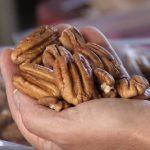 Pekanové ořechy a účinky na zdraví – co mohou nabídnout?
