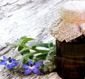 V čem vám může pomoci olej z Brutnáku lékařského?