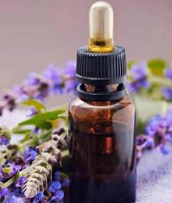 Jak se dá použít šalvějový olej a na co je dobrý?
