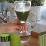 Zpracování zeleného ječmene a testy jeho kvality