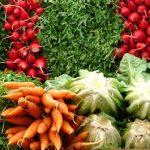 Kořenová zelenina – jakou jíst pro vaše dokonalé zdraví?