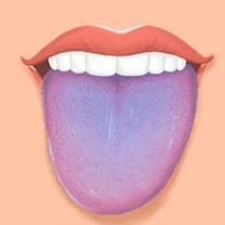 Modrý jazyk