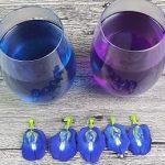 Víte, že existuje modrý čaj (Clitoria ternatea)? A je vhodné ho pít?