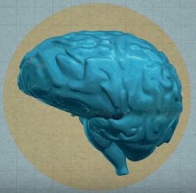 MIND dieta je nová dieta, která podle posledních studií pomáhá na Alzheimerovu chorobu a slouží i jako prevence této nemoci.