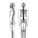 fyzioterapie.jpg