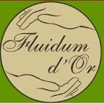 fluidum.jpg