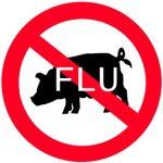 Prasečí chřipka – 10 věcí, které se vyplatí vědět