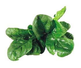 Špenát - jedna z nejvýživnějších potravin