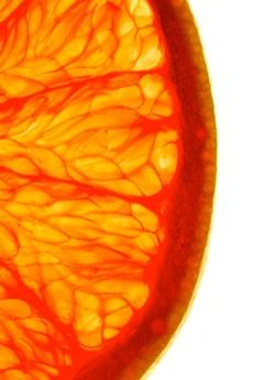 Zdroje antioxidantů ve výživě