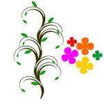 Horoskop bylin: Která léčivá rostlina je ta vaše?