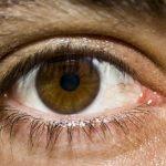 Iridologie: Pohled do očí znamená diagnózu
