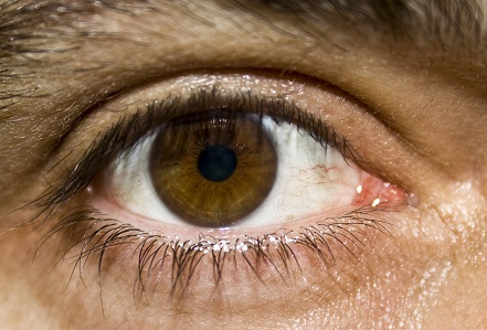 Mrkev a zdravé oči