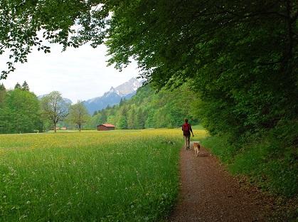 chůze a zdraví