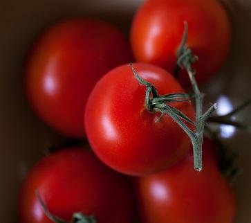 Rajčata a jejich účinky na zdraví