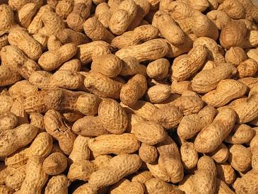 Vitamín B7 (biotin) - zdroje a funkce vitamínu