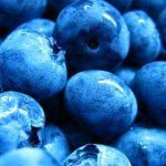 Borůvky a jejich vliv na naše zdraví