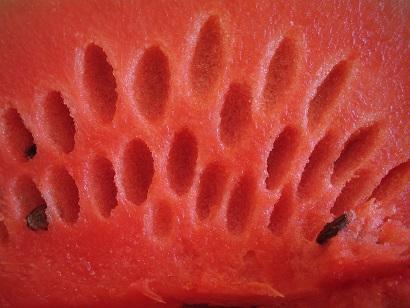 Meloun je na hubnutí super