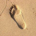 Chůze a běh naboso a zdraví – jak to je doopravdy?