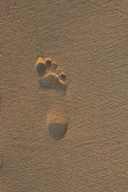 Otisk nohy v písku se zdravou klenbou nohy...