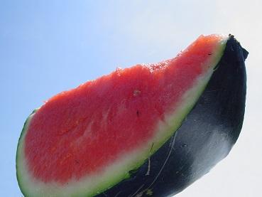 melounový olej a zdraví