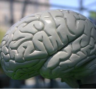 Vaskulární demence - léčba, příznaky a prognóza