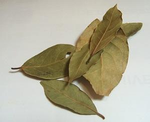 Bobkový list je vhodný pro odstranění soli z těla...