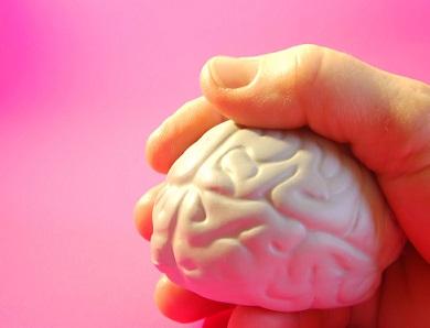 Mozek je skutečně úžasné zařízení...