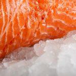 Losos a zdraví – malý kousek lososa stačí na doplnění cenných látek do organismu