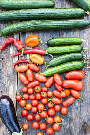 Zelenina je pro naše zažívání super!