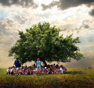 Děti a tábory - to patří k sobě...