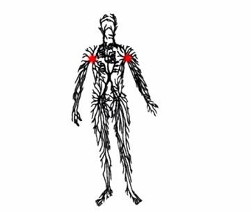 Lymfatický systém je vedle toho krevního tím nejdůležitějším, který vám proudí tělem.