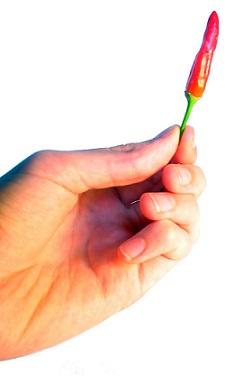 Chilli papričky obsahují kapsaicin, který, jak je již obecně známo, zrychluje metabolismus